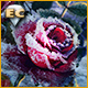 Download Living Legends Remastered: La Rose de Glace Édition Collector game