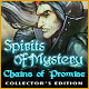 Download Spirits of Mystery: Chains of Promise Collector's Edition game